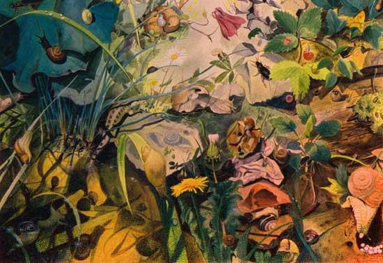 freischaffender illustrator, u.a. für wissenschaftliche publikationen und verlage, ab 1988