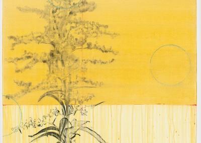 from DAO-serie; 2014 – 2015, pflanzensaft (goldrute, solidago), gummiarabicum, kohle, pigmente, 60 x 60 cm