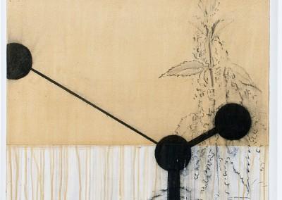 from DAO-serie; 2014 – 2015, pflanzensaft (brennessel), gummiarabicum, kohle, 60 x 60 cm